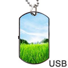 Green Landscape Green Grass Close Up Blue Sky And White Clouds Dog Tag Usb Flash (one Side)