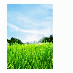 Green Landscape Green Grass Close Up Blue Sky And White Clouds Small Garden Flag (two Sides)