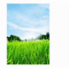 Green Landscape Green Grass Close Up Blue Sky And White Clouds Large Garden Flag (two Sides)