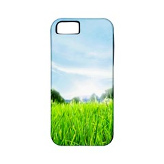 Green Landscape Green Grass Close Up Blue Sky And White Clouds Apple Iphone 5 Classic Hardshell Case (pc+silicone)