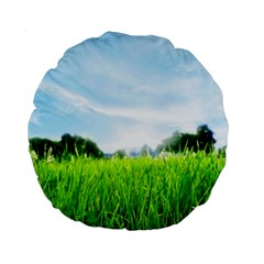 Green Landscape Green Grass Close Up Blue Sky And White Clouds Standard 15  Premium Round Cushions