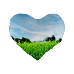 Green Landscape Green Grass Close Up Blue Sky And White Clouds Standard 16  Premium Heart Shape Cushions