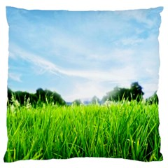 Green Landscape Green Grass Close Up Blue Sky And White Clouds Large Flano Cushion Case (two Sides)