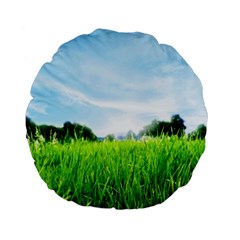 Green Landscape Green Grass Close Up Blue Sky And White Clouds Standard 15  Premium Flano Round Cushions