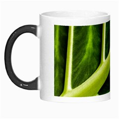 Leaf Dark Green Morph Mugs