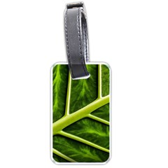 Leaf Dark Green Luggage Tags (two Sides)