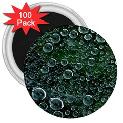 Morning Dew 3  Magnets (100 Pack)