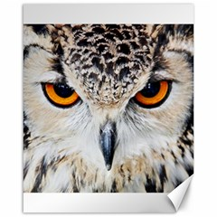 Owl Face Canvas 16  X 20