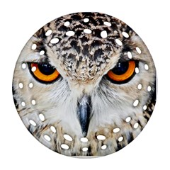 Owl Face Round Filigree Ornament (two Sides)