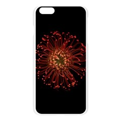 Red Flower Blooming In The Dark Apple Seamless iPhone 6 Plus/6S Plus Case (Transparent)