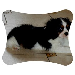Cavalier King Charles Spaniel Tri Puppy Jigsaw Puzzle Photo Stand (Bow)