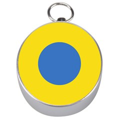 Ukrainian Air Force Roundel Silver Compasses