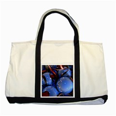 Spheres With Horns 3d Two Tone Tote Bag