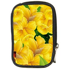 Springs First Arrivals Compact Camera Cases