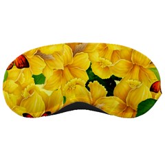 Springs First Arrivals Sleeping Masks