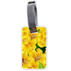 Springs First Arrivals Luggage Tags (two Sides)