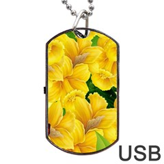 Springs First Arrivals Dog Tag Usb Flash (two Sides)