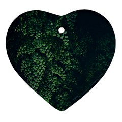 Abstract Art Background Biology Ornament (Heart)