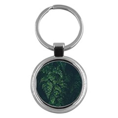 Abstract Art Background Biology Key Chains (round)