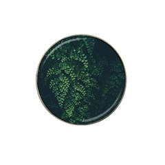 Abstract Art Background Biology Hat Clip Ball Marker (4 Pack)
