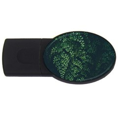 Abstract Art Background Biology Usb Flash Drive Oval (4 Gb)