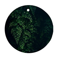 Abstract Art Background Biology Round Ornament (two Sides)
