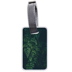 Abstract Art Background Biology Luggage Tags (one Side)