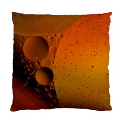 Abstraction Color Closeup The Rays Standard Cushion Case (two Sides)