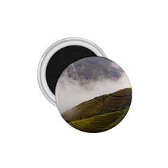 Agriculture Clouds Cropland 1 75  Magnets