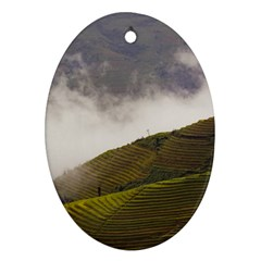 Agriculture Clouds Cropland Oval Ornament (two Sides)