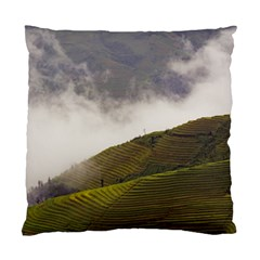 Agriculture Clouds Cropland Standard Cushion Case (two Sides)