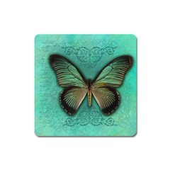 Butterfly Background Vintage Old Grunge Square Magnet