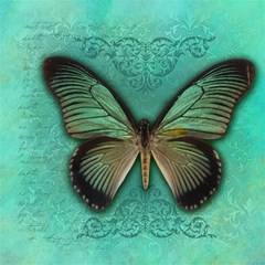 Butterfly Background Vintage Old Grunge Magic Photo Cubes
