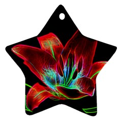 Flower Pattern Design Abstract Background Ornament (Star)