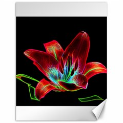 Flower Pattern Design Abstract Background Canvas 12  X 16