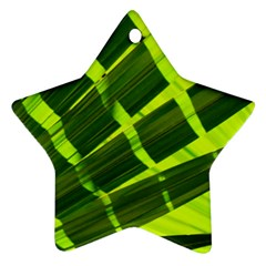 Frond Leaves Tropical Nature Plant Ornament (Star)