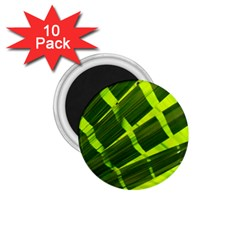 Frond Leaves Tropical Nature Plant 1 75  Magnets (10 Pack)