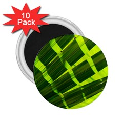 Frond Leaves Tropical Nature Plant 2 25  Magnets (10 Pack)
