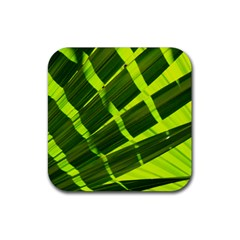 Frond Leaves Tropical Nature Plant Rubber Square Coaster (4 Pack)