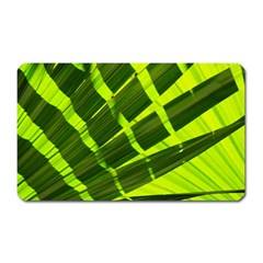 Frond Leaves Tropical Nature Plant Magnet (Rectangular)