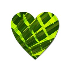 Frond Leaves Tropical Nature Plant Heart Magnet