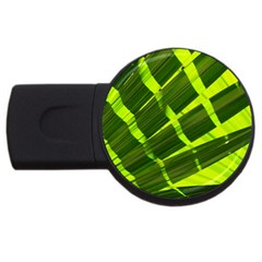 Frond Leaves Tropical Nature Plant Usb Flash Drive Round (2 Gb)