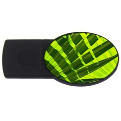 Frond Leaves Tropical Nature Plant USB Flash Drive Oval (2 GB)