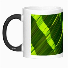 Frond Leaves Tropical Nature Plant Morph Mugs