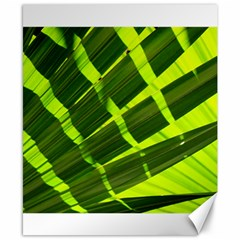 Frond Leaves Tropical Nature Plant Canvas 8  X 10