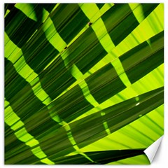 Frond Leaves Tropical Nature Plant Canvas 16  X 16