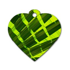 Frond Leaves Tropical Nature Plant Dog Tag Heart (one Side)