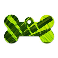 Frond Leaves Tropical Nature Plant Dog Tag Bone (one Side)