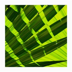Frond Leaves Tropical Nature Plant Medium Glasses Cloth (2 Side)