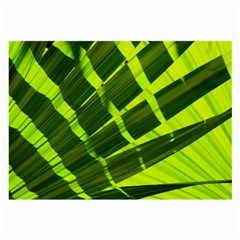 Frond Leaves Tropical Nature Plant Large Glasses Cloth